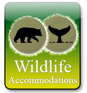Wildlife Acommodations